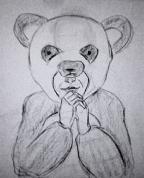 Panda (skice)
